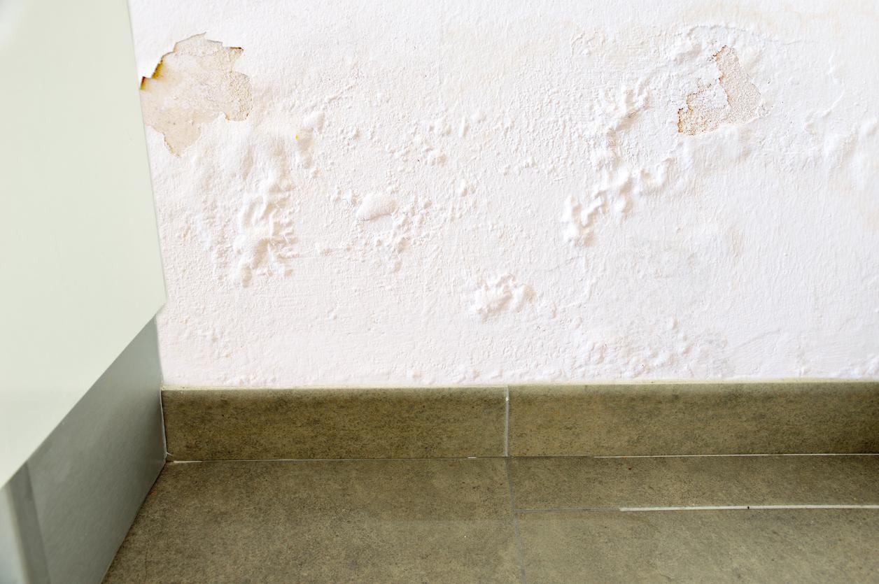 Devis Traitement Humidité  Saint-Cyr-l'École ▷ Tarif : Entreprise, diagnostic remontées capillaires murs